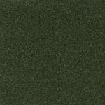 P204586 - Single Stage Dark Cypress Gold Met Paint