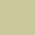P22500 - Single Stage Beige Paint
