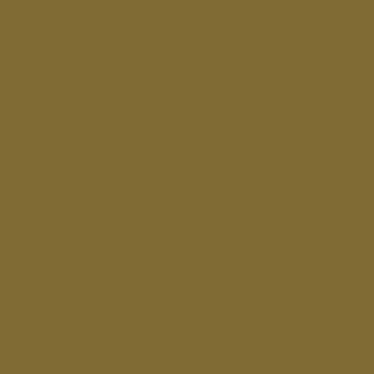 Desert Tan Custom Color Paint In Stock For Same Day