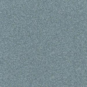 P303759 - Single Stage Brt Silver Met Paint