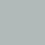 P303766 - Single Stage Twilight Gray Paint