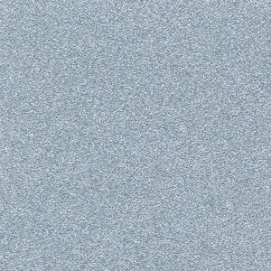 P35027 - Single Stage Silver Met Paint