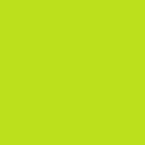P47010 - Single Stage Lime Green Paint